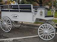 Carriage Limousine Service - Horse Drawn Carriages: Our one of a kind Limousine Carriage