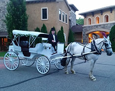 Carriage Limousine Service - Horse Drawn Carriages: Our Victorian/Vis-a-vis Carriage at a wedding in Ohio