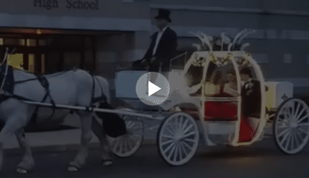 Carriage Limousine Service - Horse Drawn Carriages: Our Cinderella Carriage giving rides during prom in Wellsville, OH