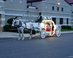 Giving rides during prom in Wellsville, OH