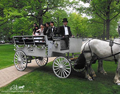 The couples posing in our Limousine Carriage before heading to prom in Hudson, OH