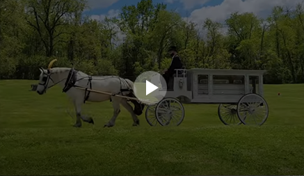 Carriage Limousine Service - Horse Drawn Carriages: Our horse drawn funeral coach during a funeral in East Liverpool, OH