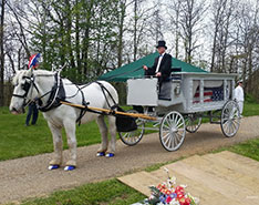Carriage Limousine Service - Horse Drawn Carriages: Our horse drawn funeral coach at a funeral near North Canton, OH