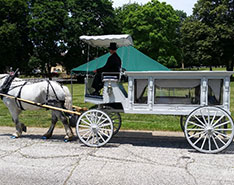 Carriage Limousine Service - Horse Drawn Carriages: Our horse drawn funeral coach at Glendale Cemetery in Akron, OH