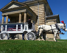 Carriage Limousine Service - Horse Drawn Carriages: Our one of a kind horse drawn funeral coach during a funeral in East Liverpool, OH