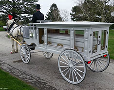 Carriage Limousine Service - Horse Drawn Carriages: Our horse drawn funeral coach during a funeral near Lorain, OH