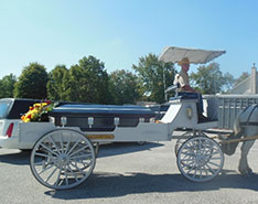 Carriage Limousine Service - Horse Drawn Carriages: Our horse drawn caisson during a funeral