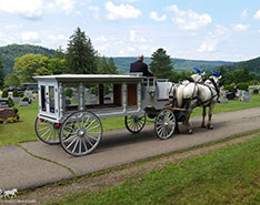 Carriage Limousine Service - Funeral Coach in Sheffield, PA