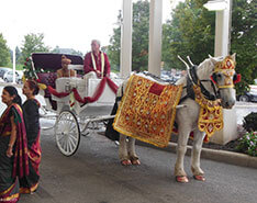 Indian Wedding Carriage Gallery