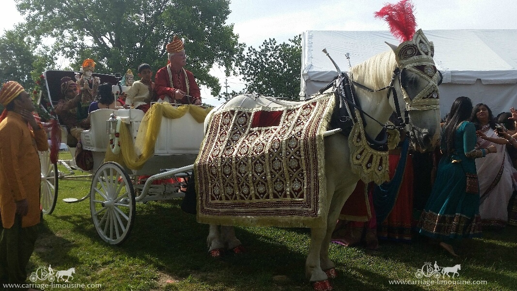 Our Indian Carriage during a special ceremony in North Royalton, OH