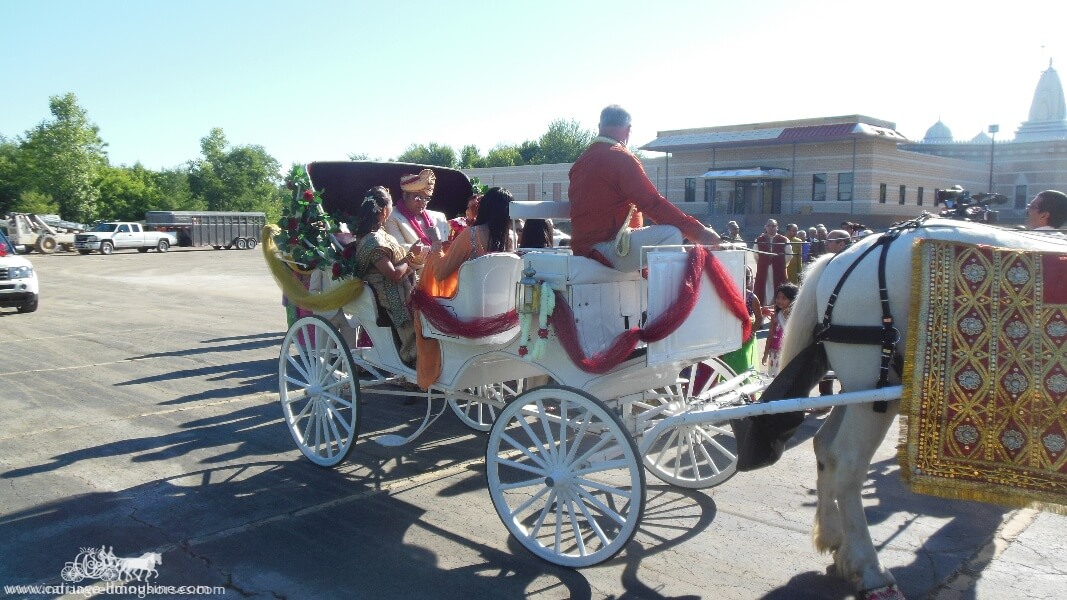 The groom and family on their way to the wedding in our Indian Wedding Carriage in Brunswick, OH""