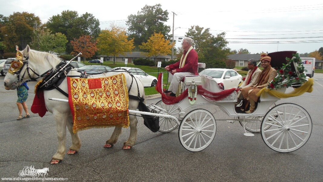 The groom in our Indian Baraat Carriage at La Centre in Westlake, OH""
