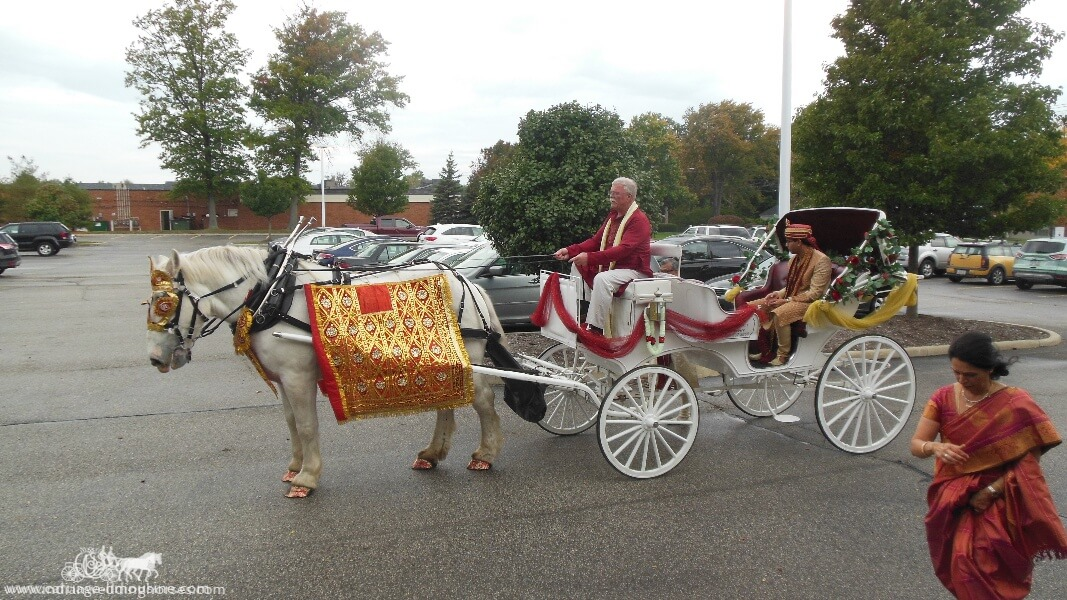 The groom in our Indian Wedding Carriage at La Centre in Westlake, OH