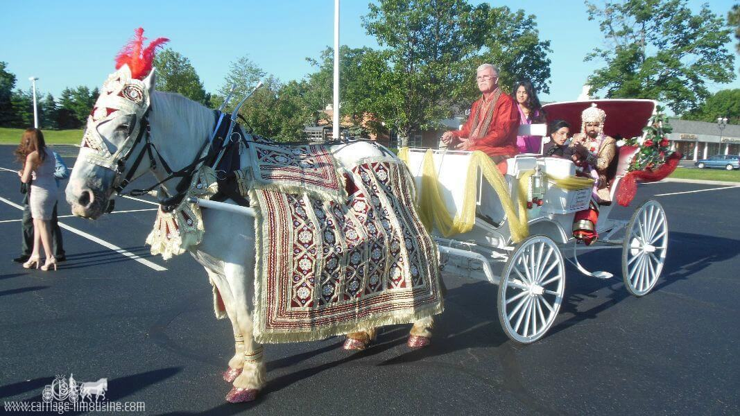 The groom and his family in our Indian Wedding Carriage at La Centre in Westlake, OH