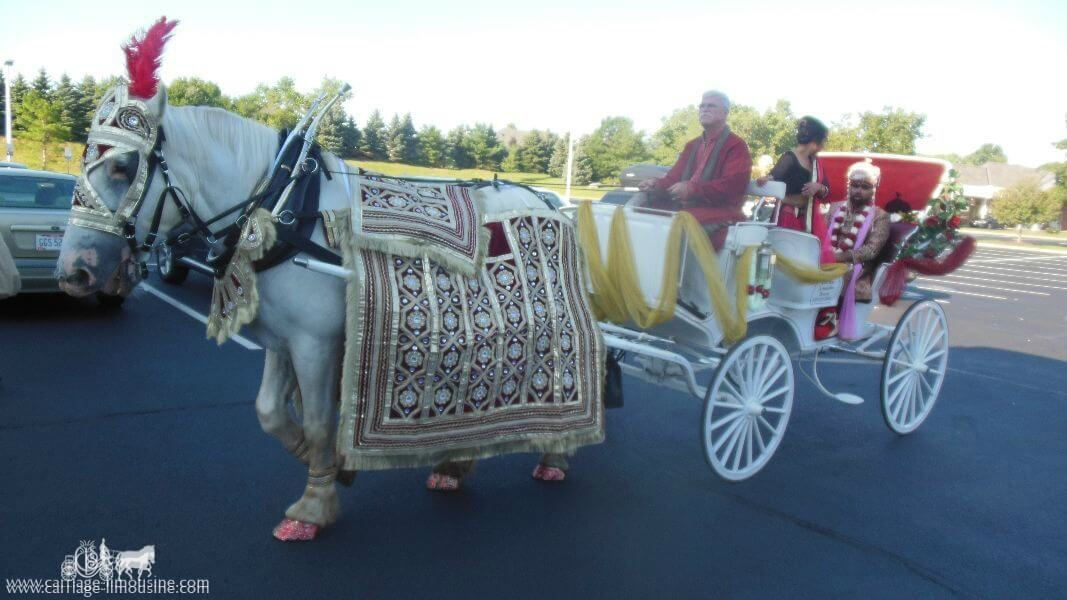 The groom  and family in our Indian Baraat Carriage at La Centre in Westlake, OH