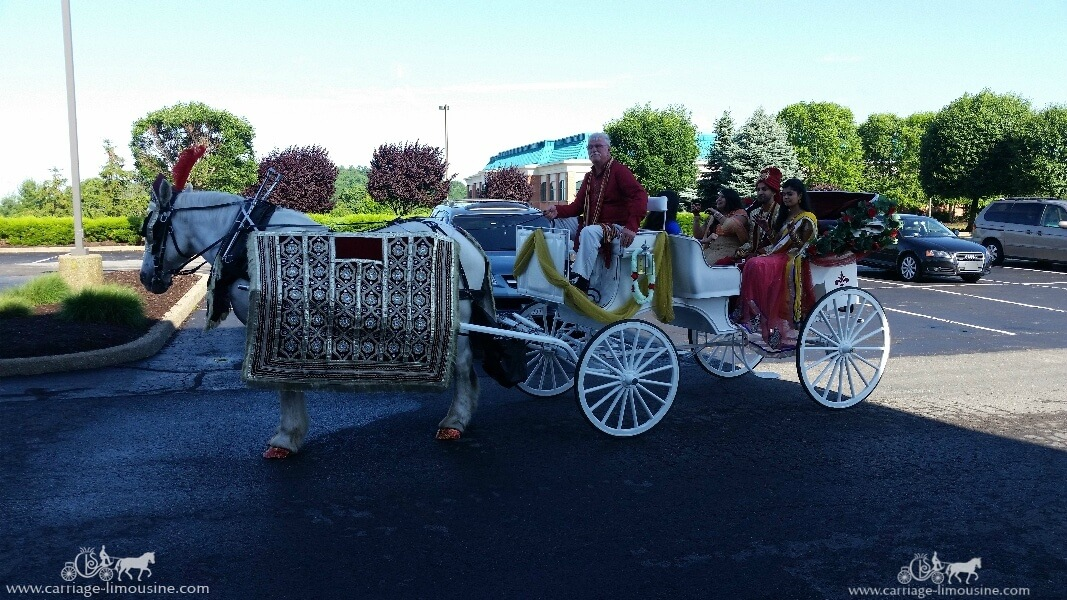 The groom and his family in our Indian Baraat Carriage in Canonsburg, PA