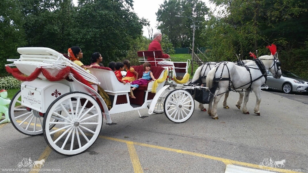 Stretch Indian Wedding Carriage at the SV Temple in Monroeville PA
