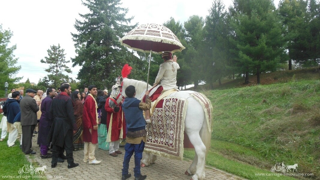 The groom coming in on one of our Indian Wedding Horses near Moundsville, WV