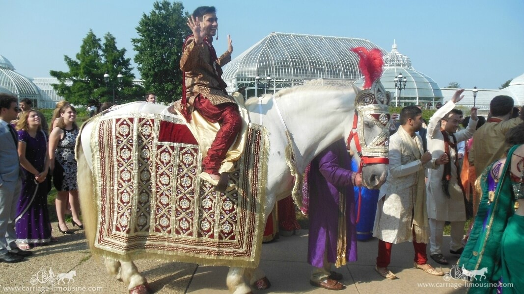 The groom riding our Indian Wedding Horse at Phipps Conservatory in Pittsburgh, PA