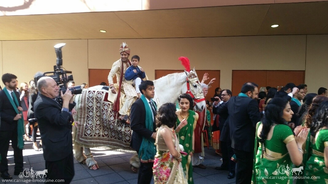 The groom riding in on our Indian Baraat Horse in downtown Pittsburgh PA