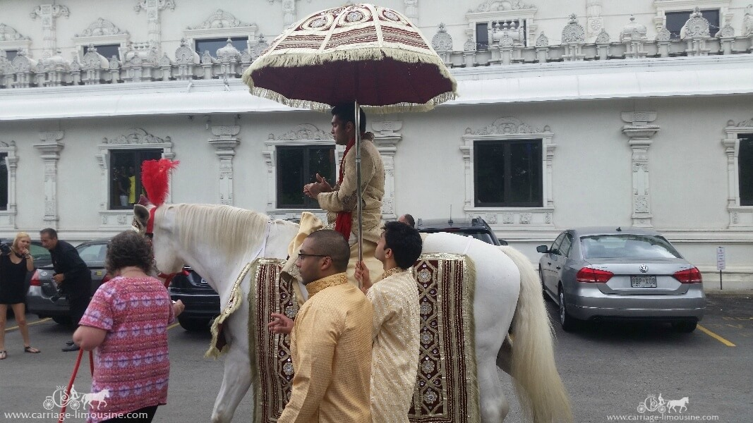 The groom riding on our Indian Wedding Horse at the Sri Venkateswara Temple in Penn Hills, PA