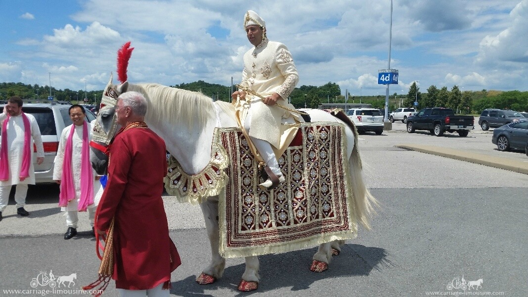 The groom riding on our Indian Wedding Horse at the Pittsburgh International Airport