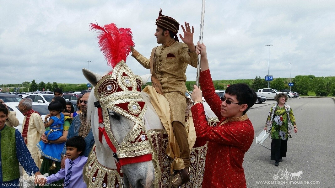 The groom riding our Indian Baraat Horse at the Pittsburgh International Airport