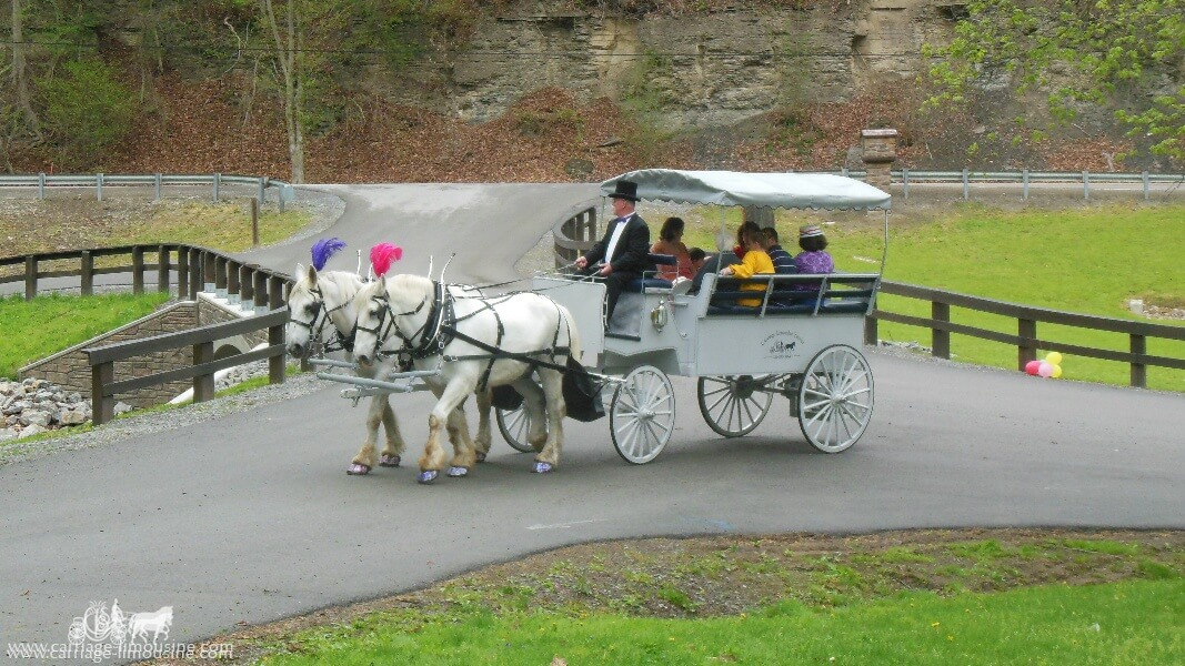 Our Limousine Carriage giving rides during a party in Beaver, PA