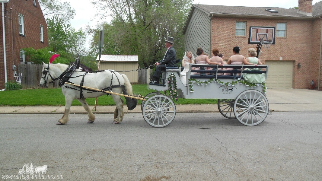 Our Limousine Horse and Carriage taking the bride and her bridesmaids to the wedding in Monaca, PA