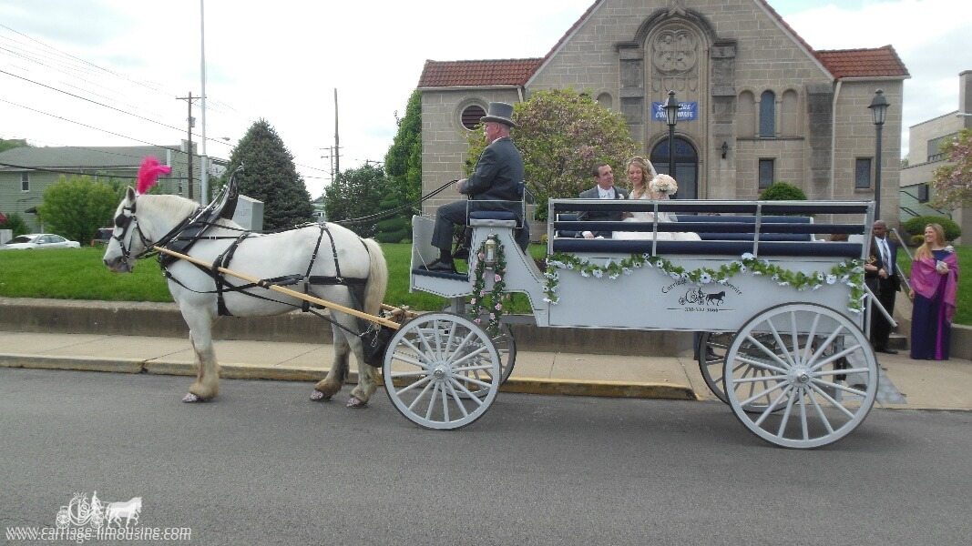 The bride and groom relaxing after their wedding in our Limousine Carriage in Monaca, PA