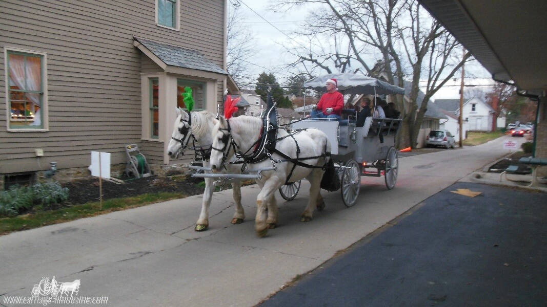 Our Limousine Horse Drawn Carriage giving rides at a holiday event in Gahana, OH