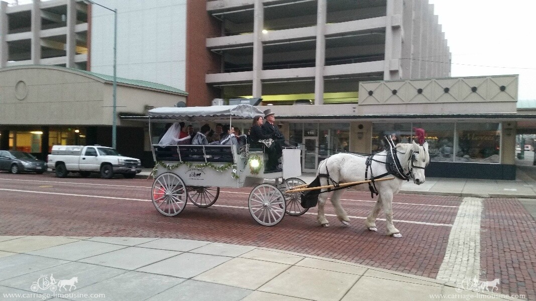 The wedding party in the Limousine Carriage in Canton, OH