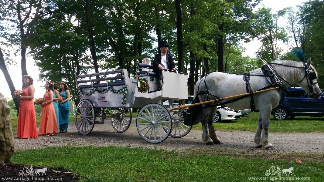 The Limousine Carriage bringing in the bridal party at Seven Springs