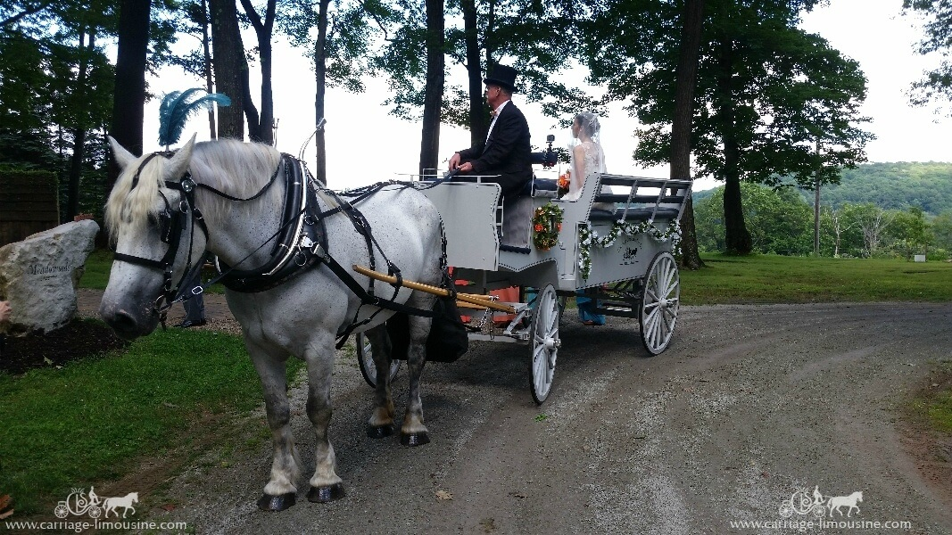 The bride in the Limousine Carriage before her wedding at Seven Springs