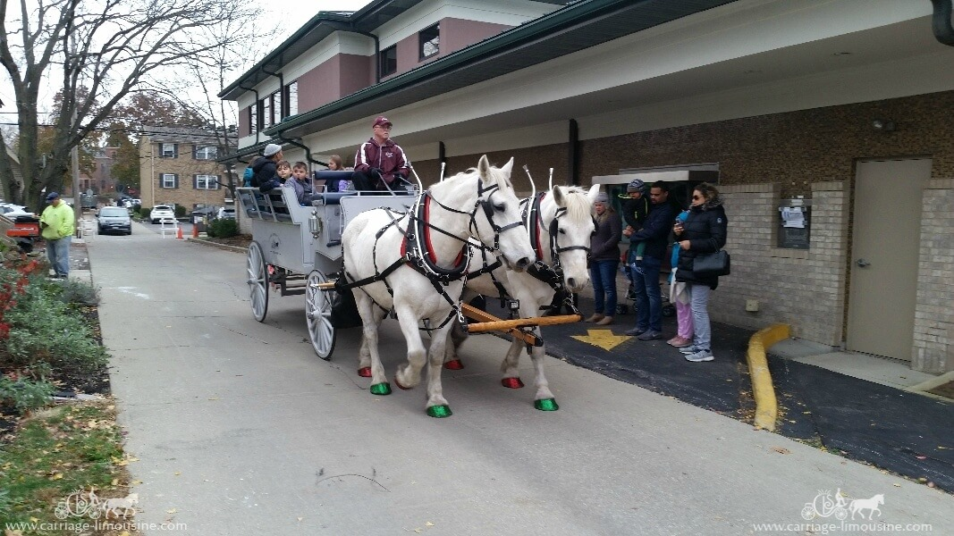Giving carriage rides during a holiday event in Gahanna OH