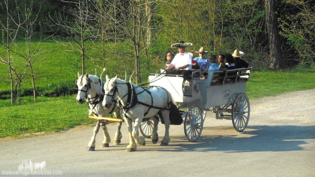 Our Limousine Carriage giving rides at Brady's Run Park near Beaver, PA