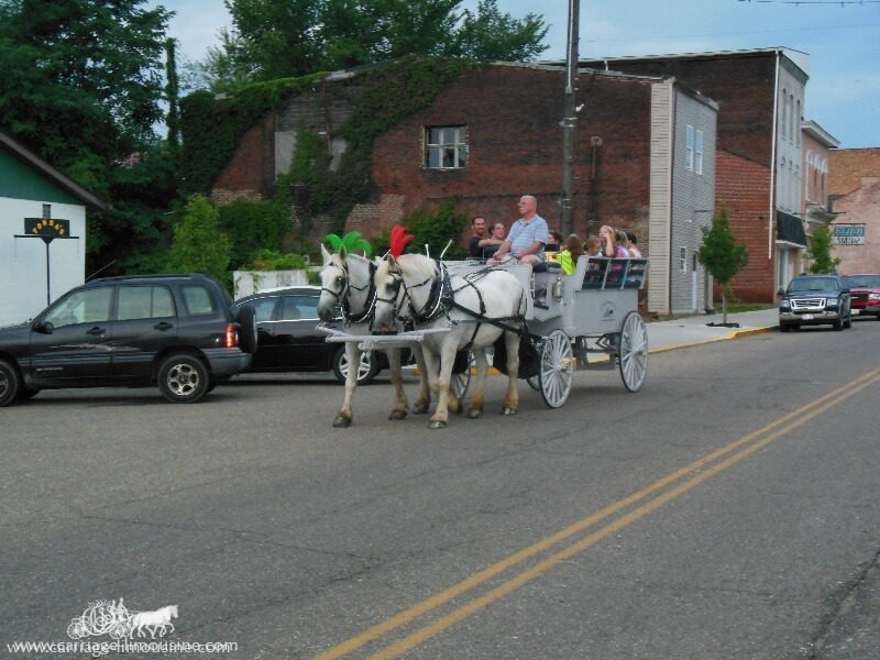 Giving carriage rides during an event in Wellsville OH