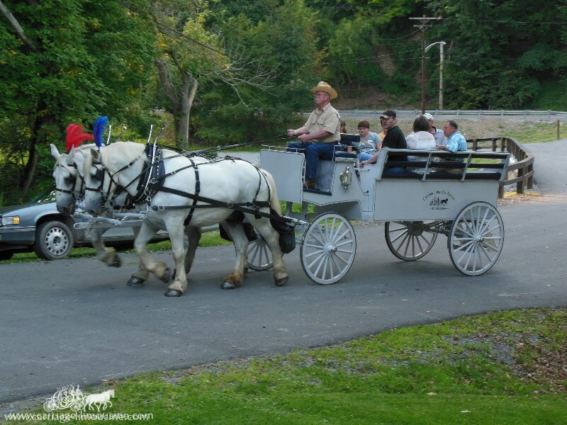 Our Limousine Carriage giving rides during a picnic at Bradys Run Park in Beaver PA