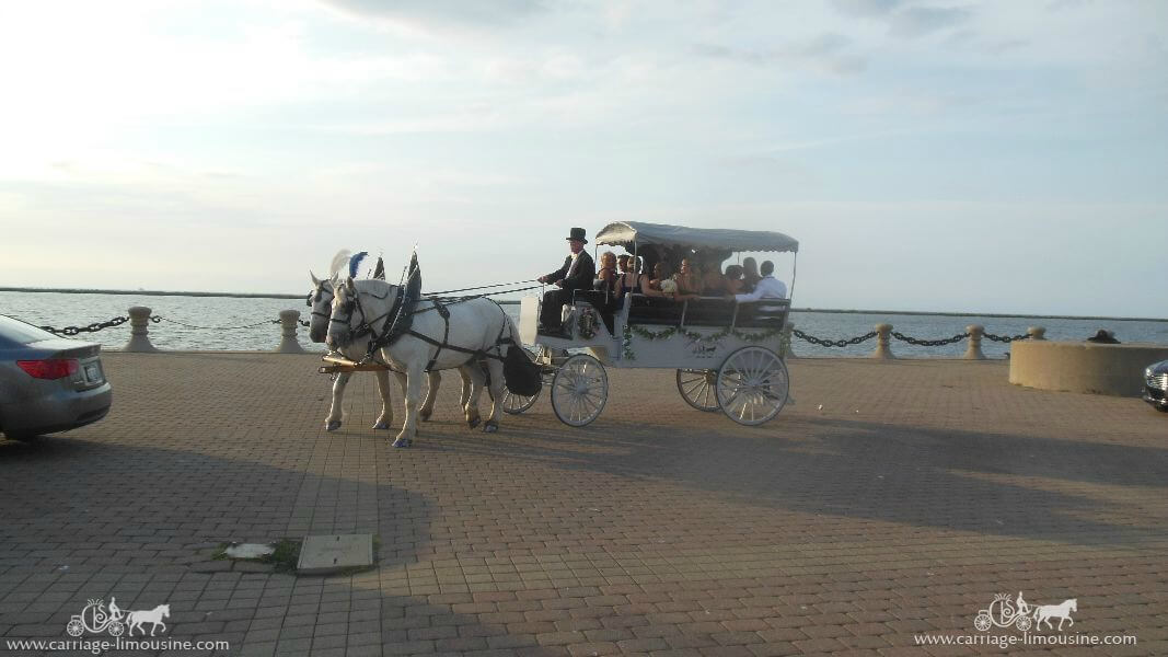 The bridal party arriving at the picture location on Lake Erie in Cleveland OH