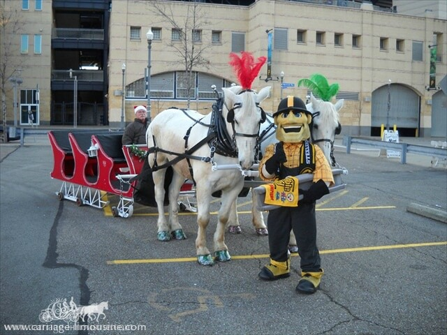 Our Sleigh with Pittsburgh Steelers mascot Steely McBeam next to PNC Park in Pittsburgh PA