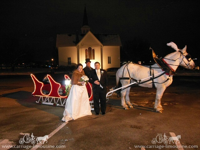 Our Sleigh at a wedding at Boardman Park in Boardman Ohio