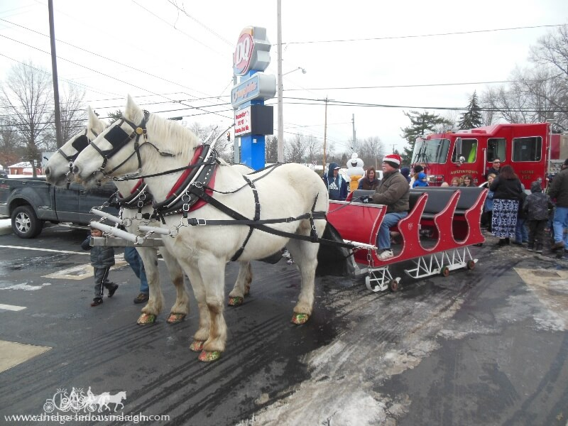 Our Horse and Sleigh giving rides during a holiday event in Austintown Ohio