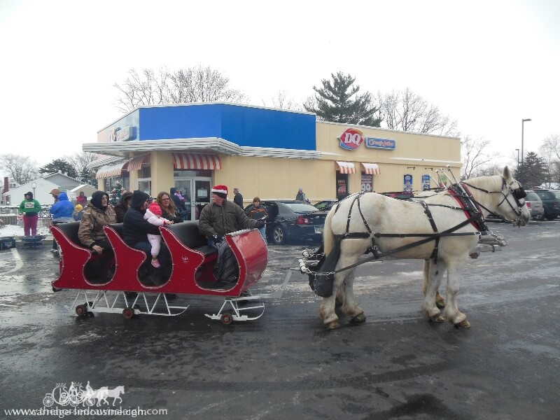 Our Horse Drawn Sleigh giving rides during a holiday event in Austintown Ohio