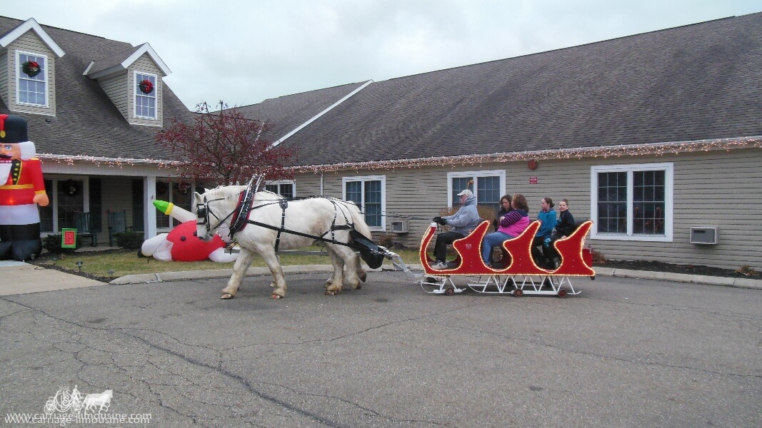 Giving rides with our Sleigh during a Christmas event in Weirton, WV
