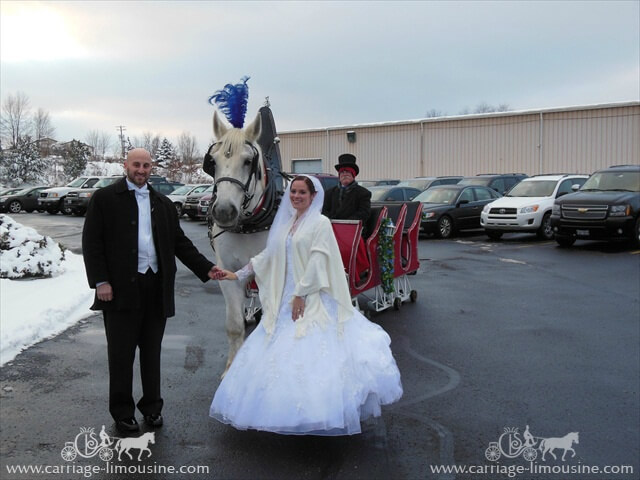 The bride and groom with our Sleigh in Wintersville Ohio