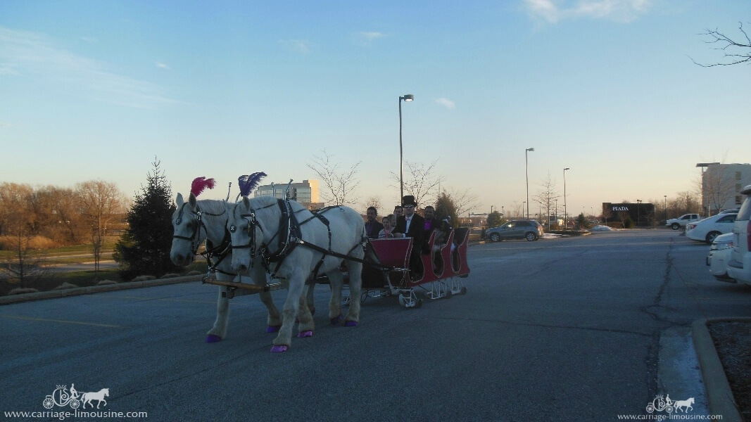 Giving rides during a princess party in Broadview Heights Ohio