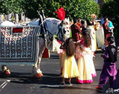 Carriage Limousine Service - Horse Drawn Carriages: Our Percheron Draft horse named King