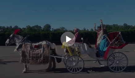 Carriage Limousine Service - Horse Drawn Carriages: Indian Wedding Carriage during a wedding in Ohio