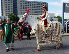 Carriage Limousine Service - Horse Drawn Carriages: Indian Wedding Horse for a Indian Baraat at Pittsburgh International Airport