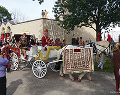 Carriage Limousine Service - Horse Drawn Carriages: Indian Carriage during an Indian Ceremony in North Royalton, Ohio